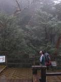 ゆっくりと縄文杉を眺める