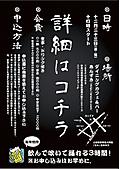 2011ポスター2